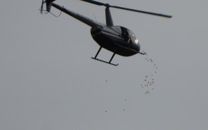 helicopter egg drop