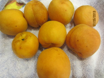 Washed apricots